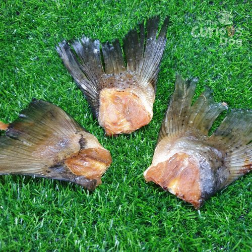 Photo of Salmon Tails